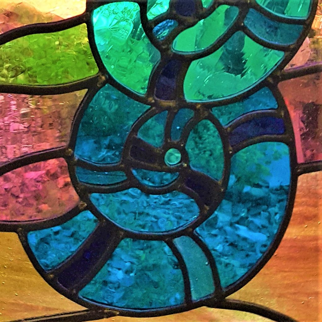 Ammonite window 2